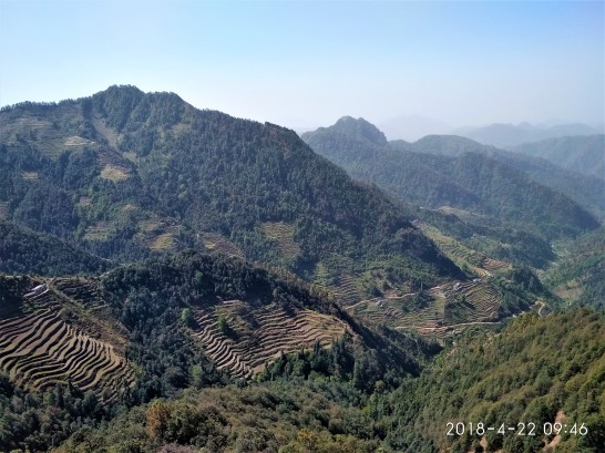 Step-farming near Dhanaulti is a treat for eyes